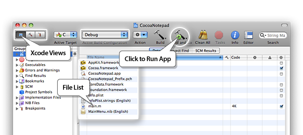 Main Xcode Window